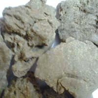 High Grade Moringa Seed Oil Cake