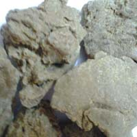 Medicinal Moringa Seed Oil Cake Suppliers