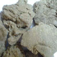 New Pure Moringa Seed Oil Cake