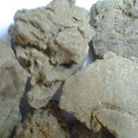 Pure Moringa Seed Oil Cake Suppliers