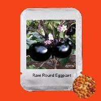 Brinjal Seed