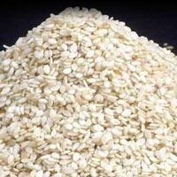 Hulled White Sesame Seeds