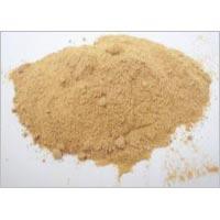 Amla Powder & Extracts