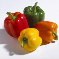 Green Capsicum, Red Capsicum, Yellow Capsicum