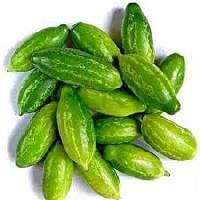 Fresh Ivy Gourd Vegetables Supplier In India