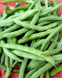 Fresh English Beans Vegetables Exporters in India