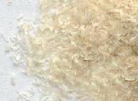 Psyllium Seeds 99% Clean Grade
