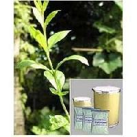 Lawsonia Alba Leaf Extract