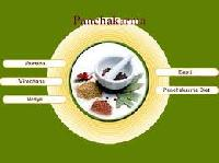 Panchakarma Treatment Services