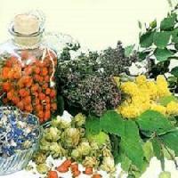 Herbals Raw Materials