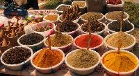 Agriculture Spices