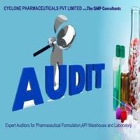 Pharmaceutical Auditing Services