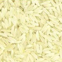 Pr 11 Sella Golden Rice