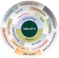 Tally Integration Software