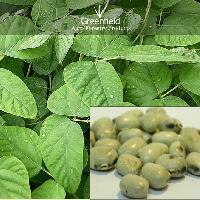 white Kinvach Medicinal Seeds ( Mucuna prurita )