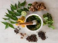 Animals Homeopathic Medicine
