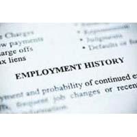 Pre Employment Verification Services