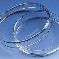 Glass Petri Dish