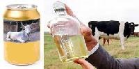Ayurvedic Cattle Medicines