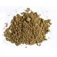 Oyster Meat Powder