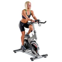Exercise Bike (CB 900)
