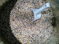 MBM Poultry Meal