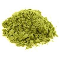 Cassia Obovata Powder