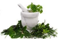 Herbal Veterinary Medicine