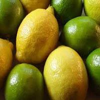 Fresh Lemon
