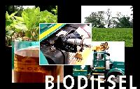 Biodiesel, Biofuels