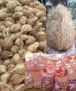 Semi-Husked Coconuts