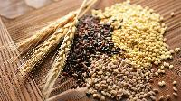 Cereals Food Grains