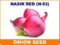 Nasik Red Onion Seeds