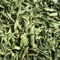 Stevia Dry Leaves As Well As Wide Range