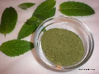 Stevia Leave Powder