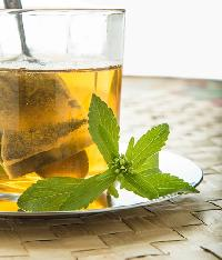 Stevia Tea Leaves Sweetener