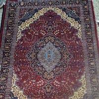 Persian Carpet (5mx7m)