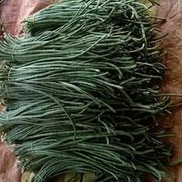 Green Bean / Luffa