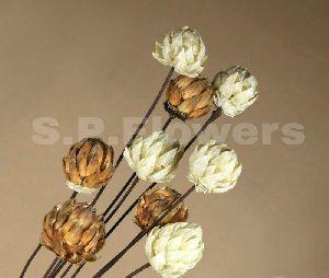 Decorative Wooden Sticks