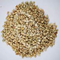Senna Seed
