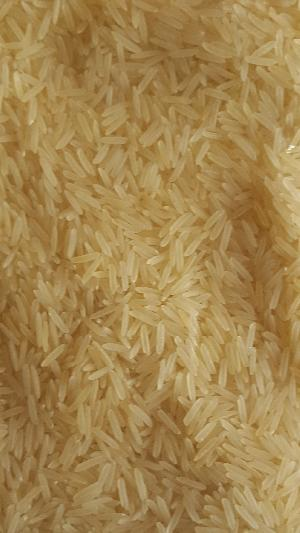 Pusa Basmati Parboiled White Rice (sella)