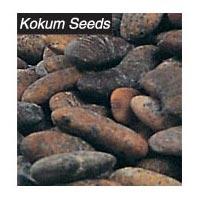 Kokum Seeds