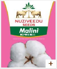 Nuziveedu Seeds