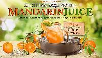 Mandarin Juice Frozen 100% Natural