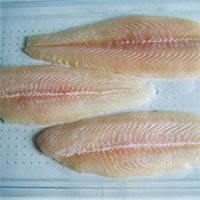 Frozen Fish Fillets