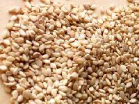 Sesame Seeds-03