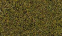 Whole Green Moong Lentils