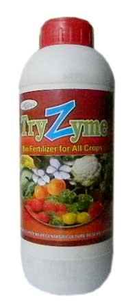 Try Zyme Plant Growth Promoter