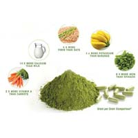 Moringa Olifera Dry Leaf Powder