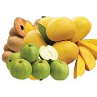 Indian Fruits